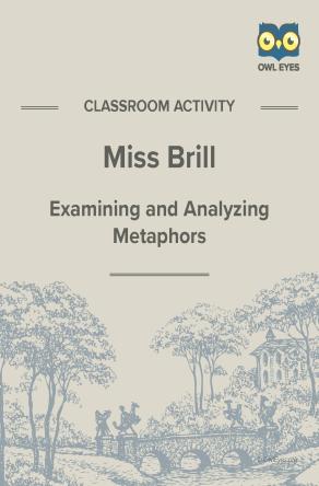 Miss Brill Metaphor Activity