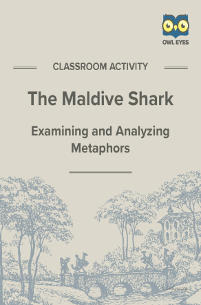 The Maldive Shark Metaphor Activity